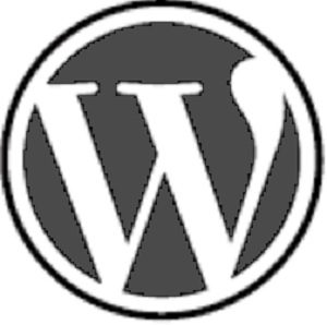 6 Tips To Avoid Hackers Attacking Your WordPress Website