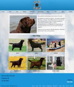 Big Sky Labradors website