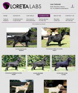 Loretta Labs website