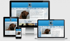 Big Sky Labradors website by Exede Digital